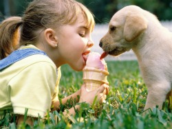 girl-with-lab-pup-ice-cream-small-pic.jpg